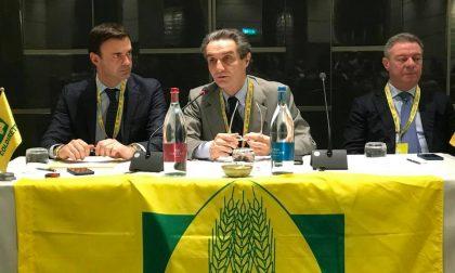 Attilio Fontana nel Mantovano: sicurezza, impresa, infrastrutture