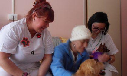 Oncologia di Cremona apre agli animali domestici dei pazienti
