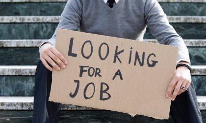 Disoccupazione Mantova numeri in calo