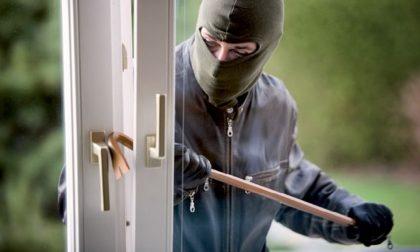 Picchiati e rapinati in casa a Reggiolo