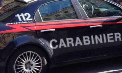 Blitz carabinieri cinofili Viadana: una raffica di operazioni