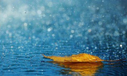 Coldiretti Mantova conseguenze economiche della pioggia