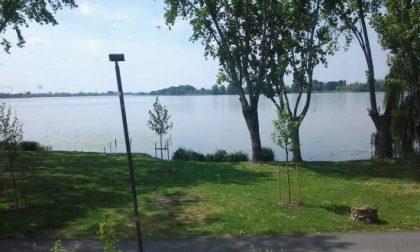 Ramo caduto al Parco Belfiore, avviata inchiesta
