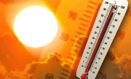 In arrivo un'ondata di calore: disagio anche forte nel Mantovano PREVISIONI METEO