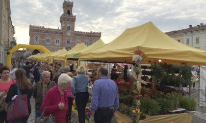 Festa della Zucca a Casalmaggiore con il mercato di Campagna Amica