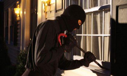 Sgominata la gang dei furti in appartamento, tre persone denunciate