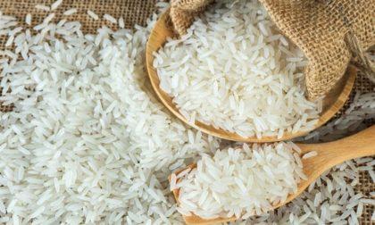 Fiera del riso vialone nano mantovano