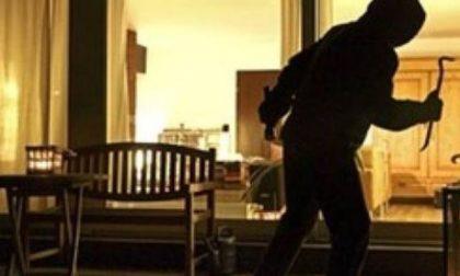 I ladri continuano ad agire indisturbati nel mantovano