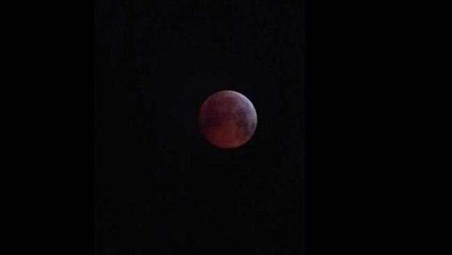 Tutti pazzi per la Luna Rossa FOTO