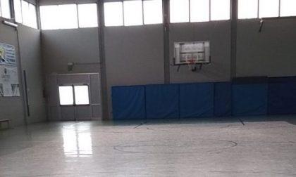 Basket giovanile: i genitori insultano e il coach ritira la squadra dal match con i mantovani