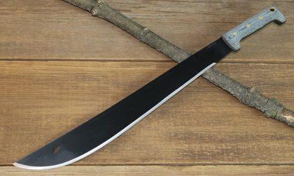 Tenta di uccidere una donna con un machete: condannato ed espulso cittadino indiano
