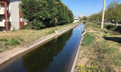 La carenza di acqua mette a rischio l'irrigazione