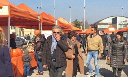 Mercato contadino Mantova: il Consorzio agrituristico rilancia l'iniziativa
