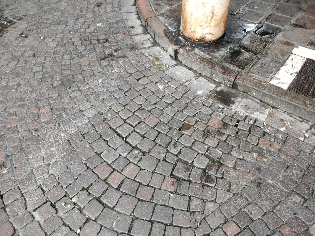 Sporcizia guano portici Mantova