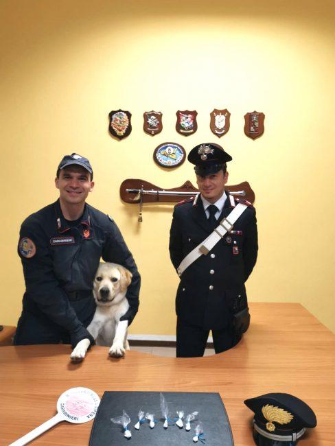 I carabinieri con il cane antidroga Grom