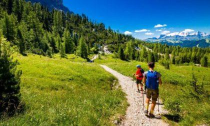 Estate sostenibile: in vacanza senza nuocere all'ambiente