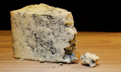 Gorgonzola italiano contaminato ritirato dal mercato in Francia