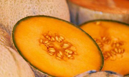 Melone mantovano protagonista del mercato di Campagna Amica di sabato