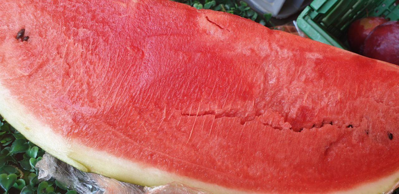 Produzione di anguria nel mantovano: calo del 20%