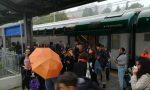 Trenord Horror Story 2: l'Halloween dei pendolari