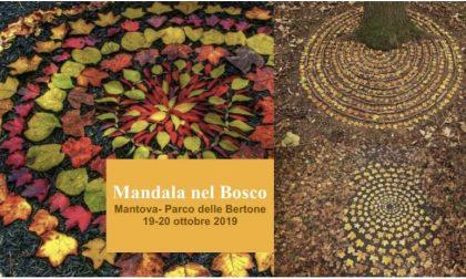 Mandala nel Bosco a Parco Bertone: ecco come partecipare