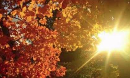 Novembre si chiude con il sole. Domenica ancora piogge   PREVISIONI MANTOVA