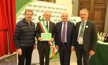 Bandiera verde agricoltura Cia per il comune di San Benedetto Po