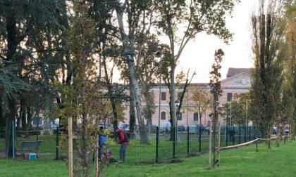 Desiderio esaudito: nuova area cani in piazza Virgiliana