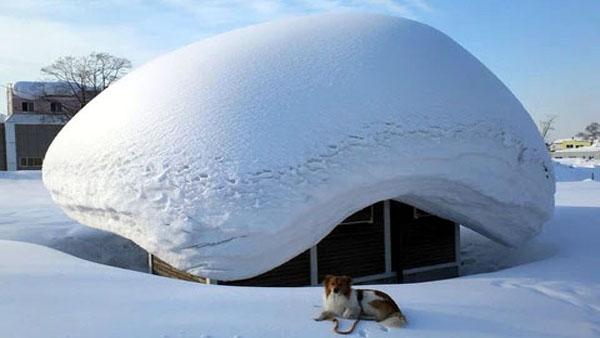 """Domani neve su tutta Lombardia, anche in pianura (ma non sarà """"Big snow"""") PREVISIONI METEO"""