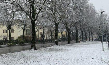 La magia della neve a Mantova raccontata attraverso Instagram FOTO