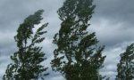 Allerta gialla per rischio vento forte, ma la Bassa può stare abbastanza tranquilla