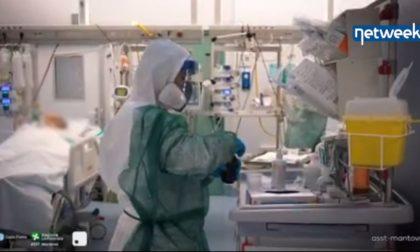Mantova e Pavia sono più avanti: plasma dei guariti per curare i malati di Covid-19