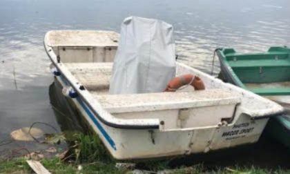 Al Parco del Mincio rubata nella notte la barca della vigilanza, è l'ennesimo furto