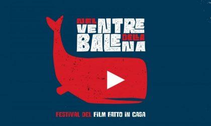 """Aperto agli studenti mantovani """"Nel ventre della balena, il Festival del film fatto in casa"""""""