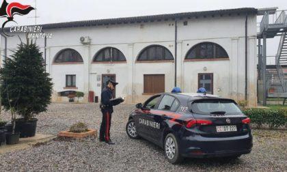 Dalla comunità di Marcaria al carcere: 17enne finisce al Beccaria