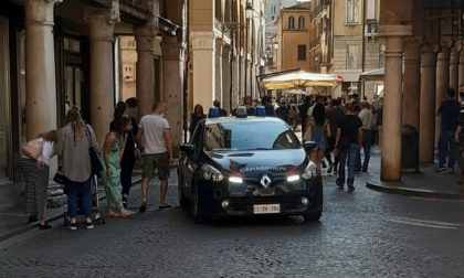 Via vai sospetto in casa: i Carabinieri scoprono 23 piante di cannabis