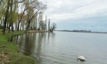 Balneabilità del Lago Superiore di Mantova: i risultati sono positivi