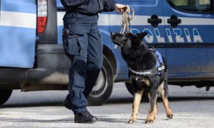 Sgominata banda di spacciatori: 12 arresti, coinvolta anche Mantova