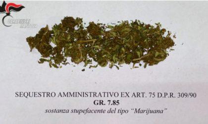 21enne trovato con 8 grammi di marijuana, segnalato all'Autorità Giudiziaria