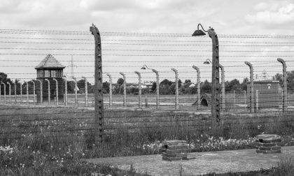 Medaglia d'onore al signor Pagani, superstite del campo di concentramento di Brandeburg