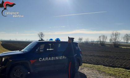 Blitz nei campi: scoperti 5 lavoratori irregolari a Castellucchio