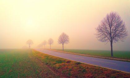 Cieli perlopiù soleggiati, con qualche nebbia o foschia | Meteo weekend