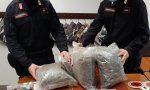 Padre e figlio trovati in possesso di quasi 4 chili di marijuana VIDEO