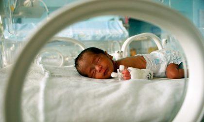 Sostegno ad Abio e alla Pediatria di Mantova: l'iniziativa di due mamme mantovane
