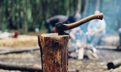 Contadino taglia un albero che cade e colpisce una passante
