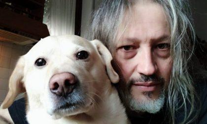"""Il labrador Beethoven muore a 7 anni avvelenato, la disperazione del padrone: """"Mi hanno ucciso un figlio"""""""