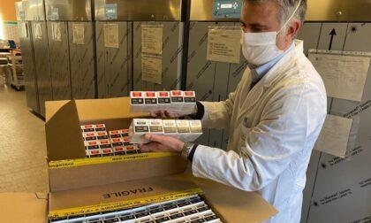 Al via la sperimentazione degli anticorpi monoclonali a Mantova