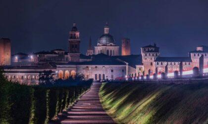 Le luci spente del Castello per tutelare i pipistrelli di Gonzaga fanno il giro del web