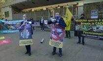 Contro la caccia: protesta 5 Stelle fuori dal Pirellone