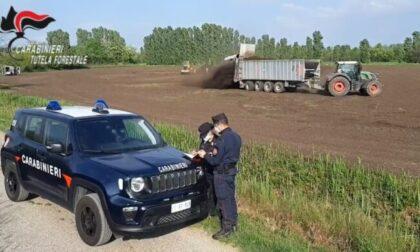 Fanghi tossici, nel bresciano vietato l'accesso ai campi velenosi e la raccolta del grano